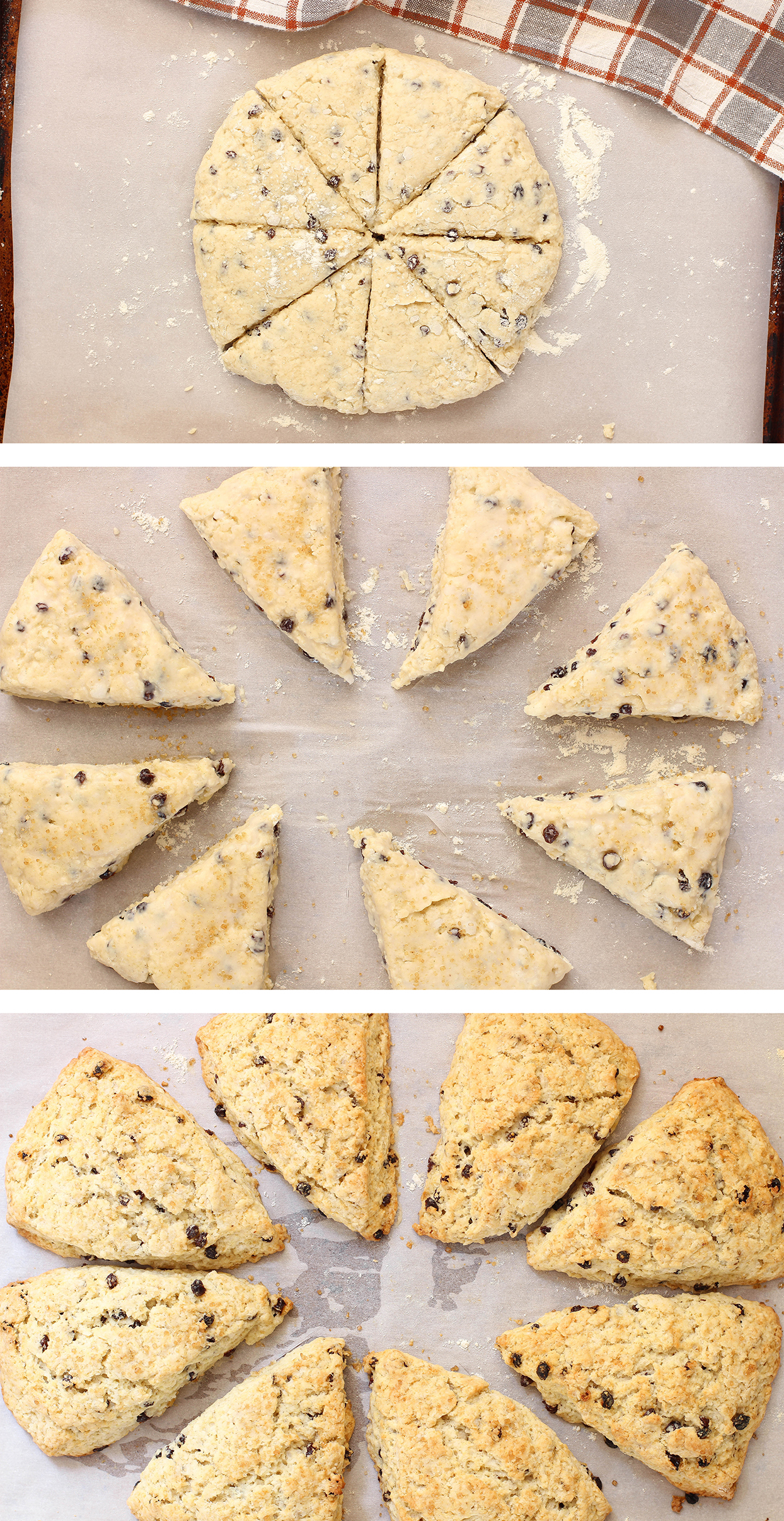 Vegan Currant Cardamom Scones