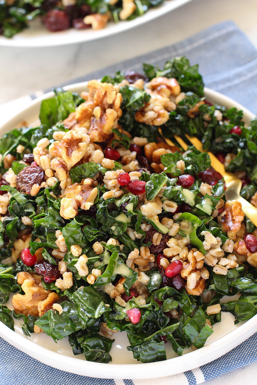 Fall Kale & Farro Salad - with pomegranate, walnuts, cherries & lemon oregano vinaigrette